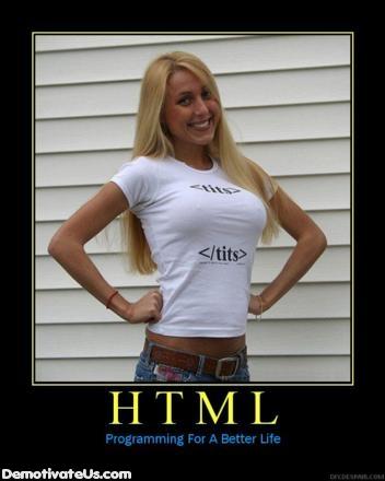html-tits-demotivational-poster